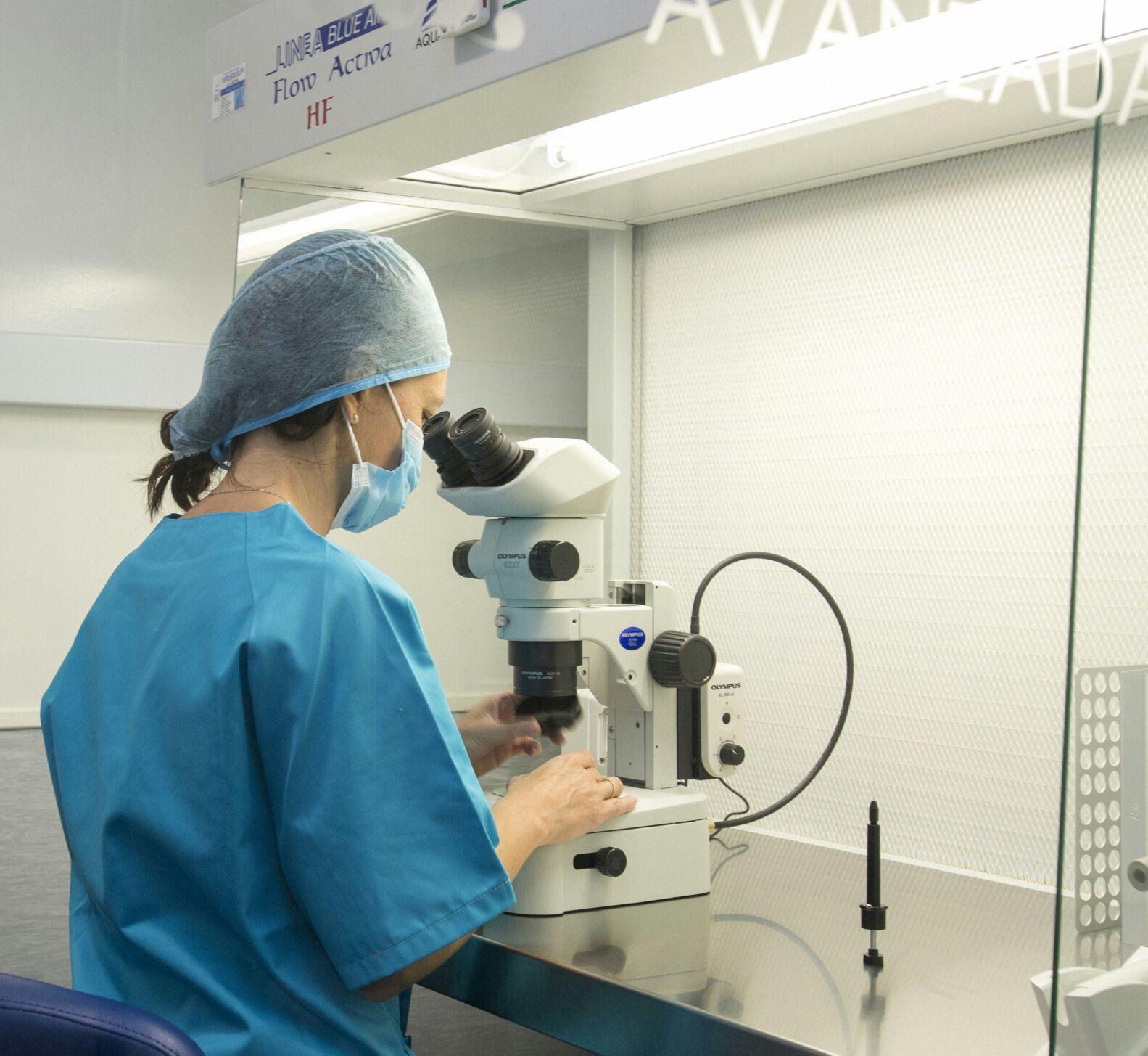 Embriólogos Aluz observando un embrión al microscopio